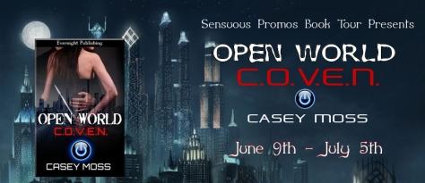 Casey Moss Book Tour